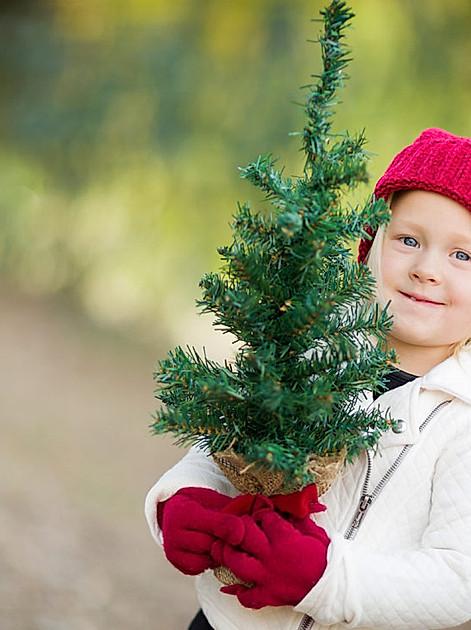 Weihnachtsdeko selber machen & mehr. So wird das Fest der Liebe – aus Liebe zur Umwelt – nachhaltiger