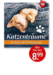 Bild Katzenträume CD
