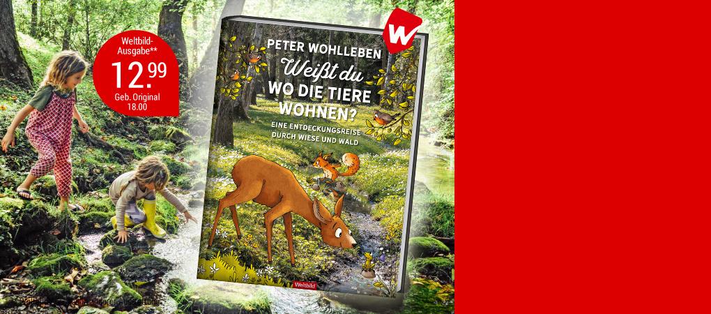 NEU: Eine Entdeckungsreise durch den Wald!